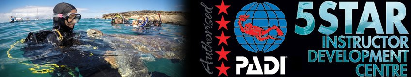 PADI Divemaster PADI Instructor Internship Course