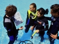 Divemaster internship Europe Diver 5