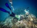 PADI Dive Centre Tenerife