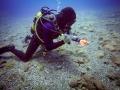 PADI 5 Star Dive Centre Tenerife