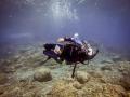 PADI Dive Centre Canary Islands