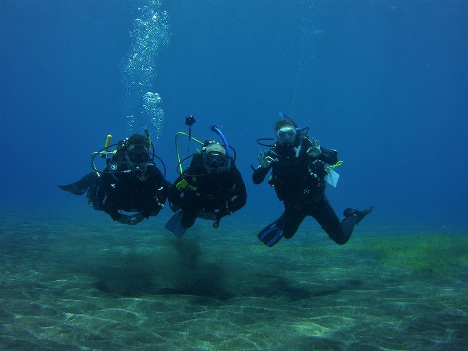 Enjoying the aquatic life of Tenerife
