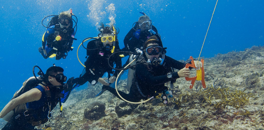 PADI Drift Diver Specialty